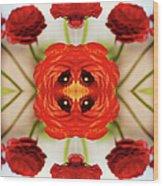 Ranunculus Flower Wood Print