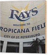 Seattle Mariners V Tampa Bay Rays Wood Print
