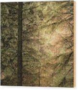 Stunning Fine Art Landscape Image Of Winter Forest Landscape In  Wood Print