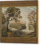 The Falls Of Niagara  Wood Print