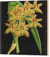 Vintage Orchid Print On Black Paperboard Wood Print