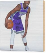 2017-18 Sacramento Kings Media Day Wood Print