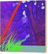 3-24-2009abcdefghijklm Wood Print