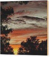 Backyard Sunset Wood Print