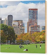New York City Manhattan Skyline Wood Print