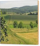 Photograph Of A Field In Germany Wood Print