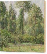 Poplars  Eragny  Wood Print