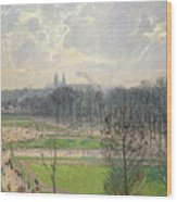 The Garden Of The Tuileries On A Winter Afternoon  Wood Print
