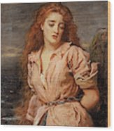The Martyr Of The Solway Wood Print