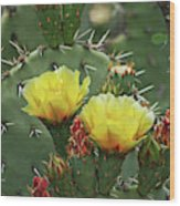 Yellow Prickly Pear Flowers Wood Print