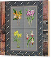 Orchids Antique Quadro Weathered Plank Rusty Metal Wood Print