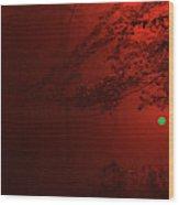 4-26-2009abcdefghijklmno Wood Print