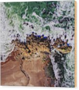 Aerial View Of The Beach, Newport Wood Print
