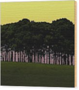 Cookworthy Knapp Wood Print