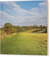 Easby To Richmond Wood Print