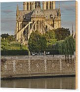 Morning Light On Cathedral Notre Dame Wood Print