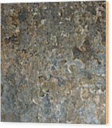 Weathered Stone Wall Wood Print