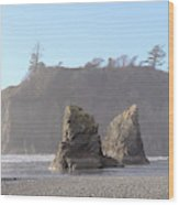 Ruby Beach Sunshine Wood Print