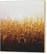 Concert Crowd Wood Print