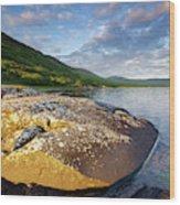 Loch Na Keal Wood Print