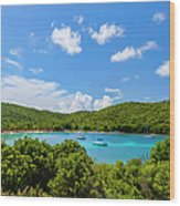 Salt Whistle Bay, Mayreau Wood Print