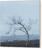 Moody Winter Landscape Image Of Skeletal Trees In Peak District  Wood Print