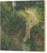 Bather In The Woods  Wood Print