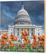 Usa, Washington Dc Wood Print