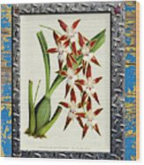 Orchid Framed On Weathered Plank And Rusty Metal Wood Print