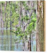A Beautiful Day In The Bayou Wood Print