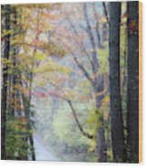 A Canopy Of Autumn Leaves Wood Print