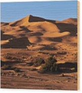 A Caravan In The Desert Wood Print