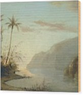 A Creek In St. Thomas Virgin Islands, 1856 Wood Print