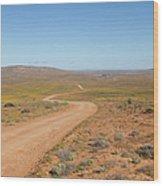 A Dirt Road Winds Through The Barren Wood Print