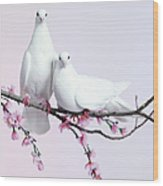 A Pair Of Doves Sat On A Branch With Wood Print