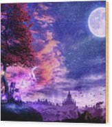 A Place For Fairy Tales Wood Print