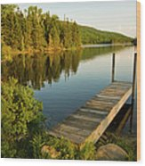 A Small Dock In Long Pond In White Wood Print