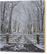 A Snowy Scene Wood Print