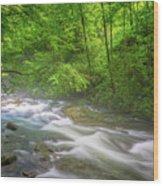 A Springtime Stream Wood Print
