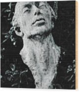 A Stone Bust In The Forest Wood Print