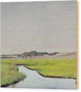 A Stream At Springtime Wood Print