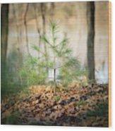 A Tiny Pine Wood Print