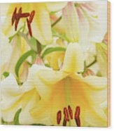 A Tower Of Lilies Wood Print
