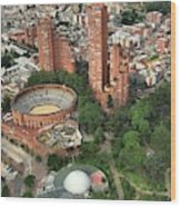 A View Of Downtown Bogota Wood Print