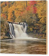 Abrams Falls Autumn Wood Print
