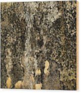 Abstract Scary Ocher Plaster Wood Print