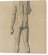 Academic Nude, Seen From The Back Wood Print