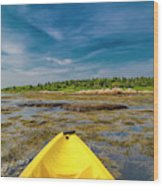 Adventurous Kayak In Maine Wood Print