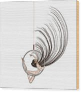Aerial Hoop Dancing Freedom Wood Print