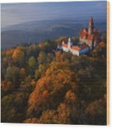 Aerial View On Romantic Fairy Castle In Wood Print